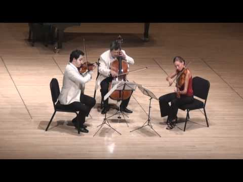 Beethoven String Trio in C minor - 3rd mvt. | G. Schmidt, L. Francis, E. Kim