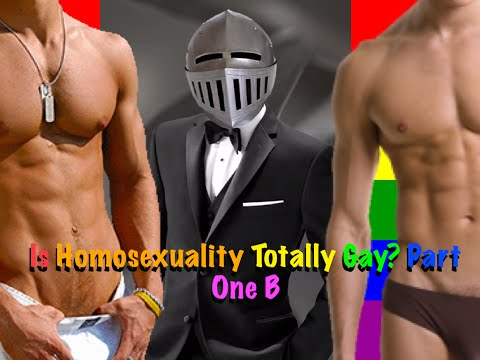 Is homosexuality Totally Gay? Part One B