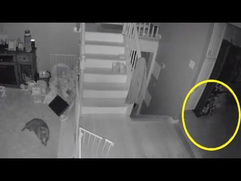 Ghost Caught On Nest Camera