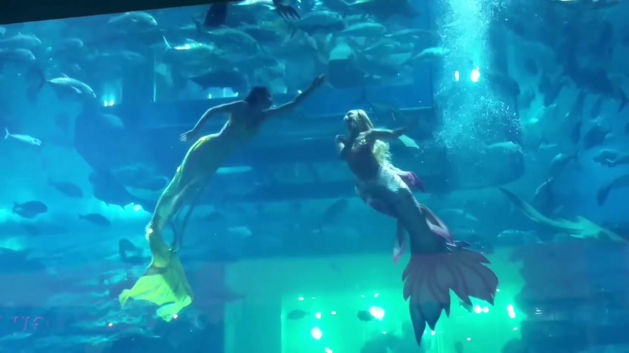 Image result for mermaid show dubai