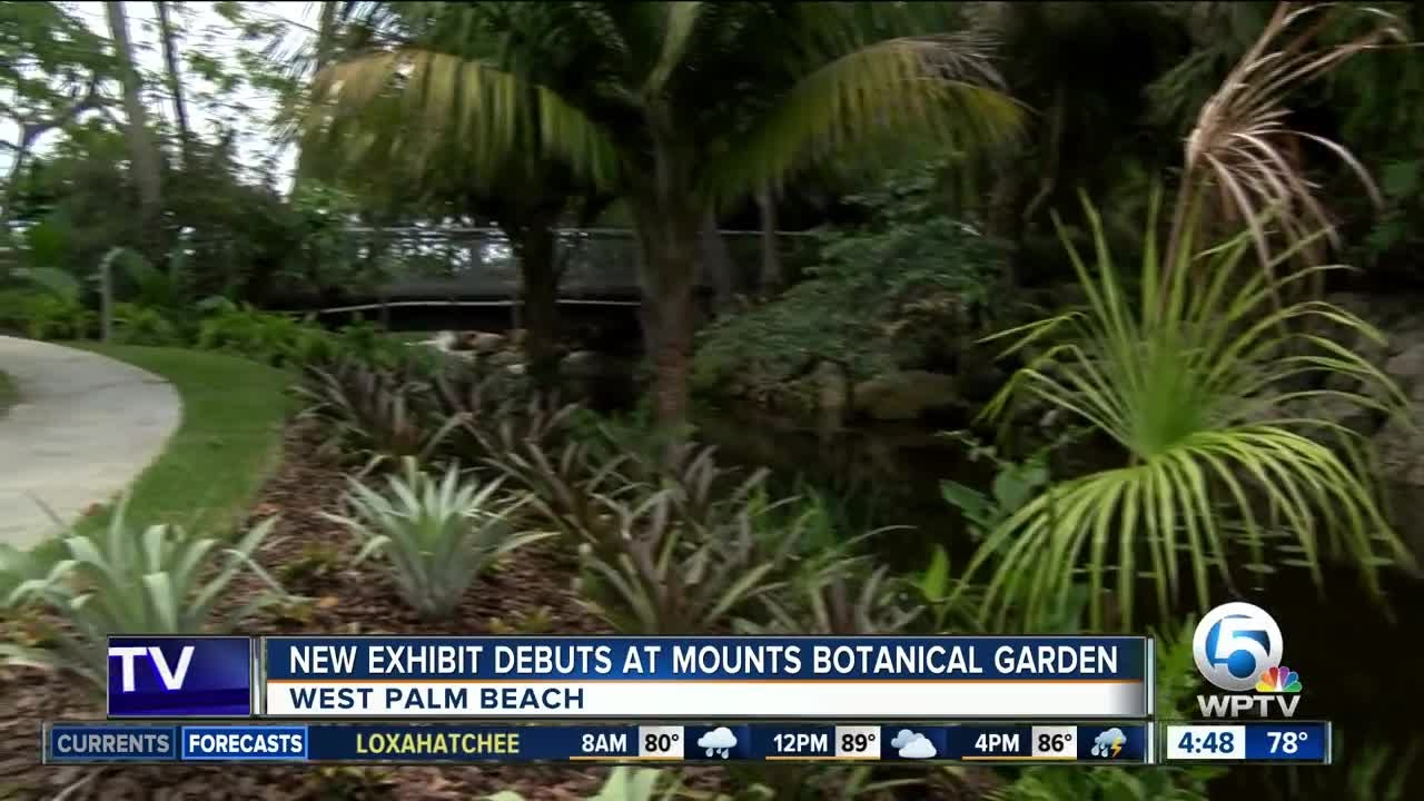 Mounts Botanical Garden Opens U0027Windows On The Floating Worldu0027. WPTV News | West  Palm Beach Florida