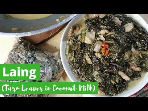 LIVE: Cooking Laing | Taro Leaves in Coconut Milk