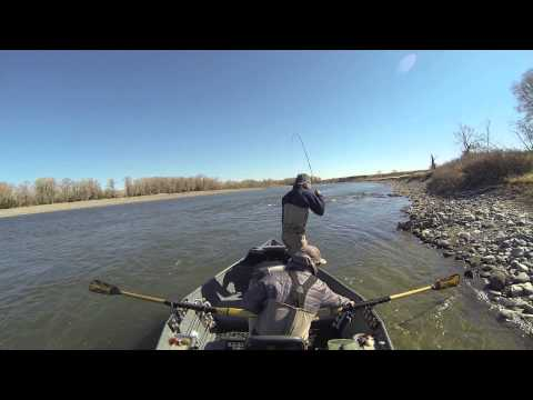 Yellowstone Streamer Fishing Spring 2013 | Wild Angling