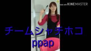 チームしゃちほこ 秋本帆華さんのPPAP (ペン ポーチ アキモト ペン) 可...