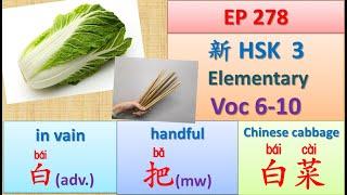 [EP 278] New HSK 3 Voc 6-10 (Elementary): 把(介)、把(量)、把握、白(副)、白菜    新汉语水平-初级词汇    Join My Daily Live