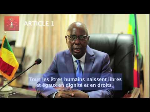 Article 1 de la Déclaration universelle des droits de l'homme