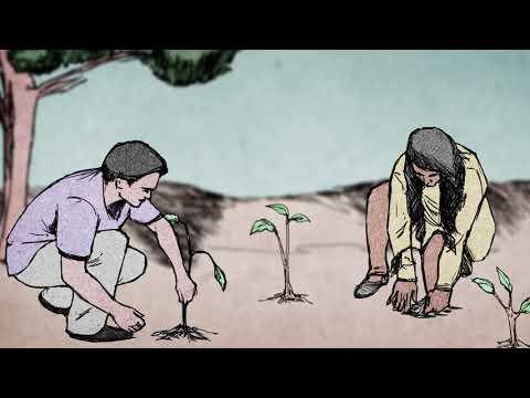 programa-municípios-verdes-|-série-sustentabilidade-ambiental