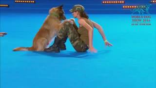 видео WORLD DOG SHOW 2016