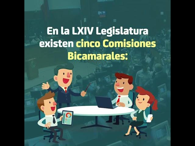 Comisiones Bicamarales