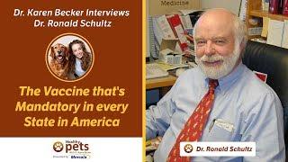 Dr. Karen Becker Interviews Dr. Schultz (Part 3 of 4)