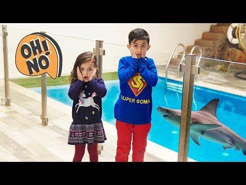 سوبر سمعة وفرح المشاكسة في المسبح  - super somaa and farah at the pool