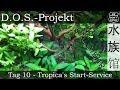 Tag 10 - Tropica's Start-Service   D.O.S.-Projekt