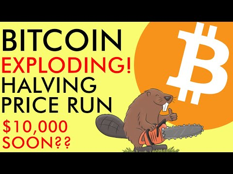 Bitcoin Price EXPLOSION! Halving Run Happening NOW - $10,000 Next? Explained