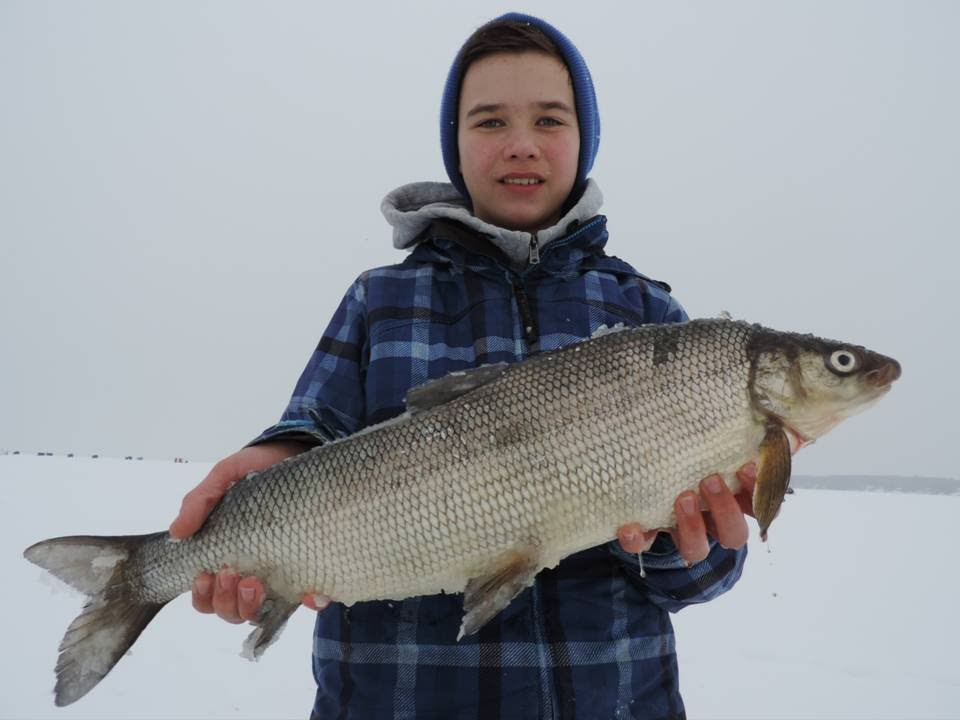 Lake simcoe fishing