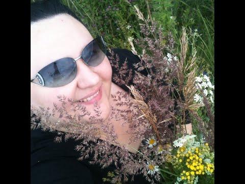 # 231 Собрала букет из полевых цветов.
