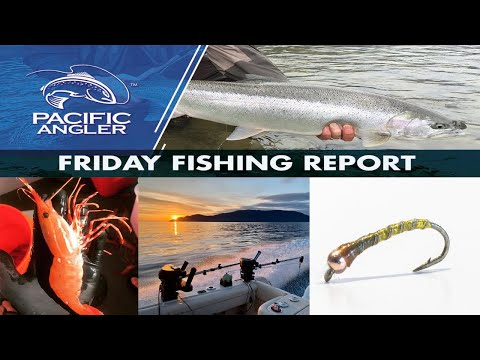 Pacific Angler Vancouver Fishing Report - April 10, 2020