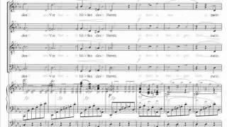 Brahms - Ein deutsches Requiem - 4. Wie lieblich sind deine Wohnungen