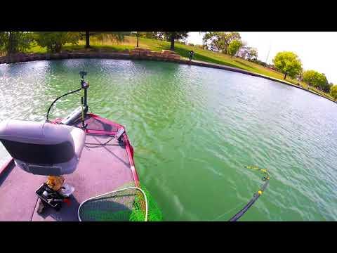 SALMON FISHING CHICAGO