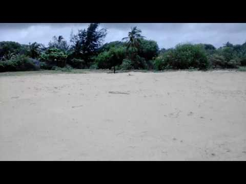 Property near calamari restaurant - Candolim beach - Goa