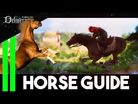 Complete HORSE GUIDE (Armor, Speed, Saddle and More) - Kingdom Come Deliverance