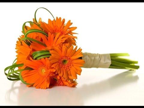 Orange Gerbera Daisy Wedding Bouquet - YouTube