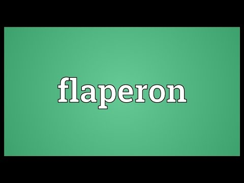 Flaperon Meaning