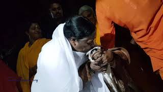 Amma hugging Gir calf