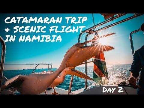 Catamaran Trip & Scenic Flight in Namibia