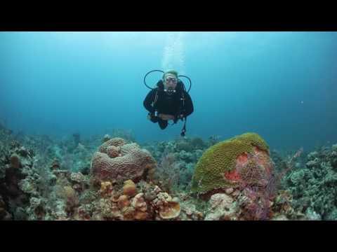 ScubaLab TV: Cressi Ace and Patrol Scuba Diving BCs