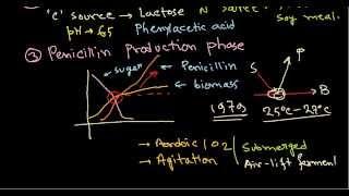 Penicillin production - industrial production