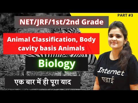 NET/JRF/1st/2nd Grade   Animal Classification, Body cavity basis Animals   Day 3