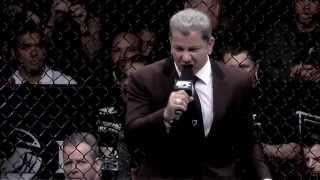 UFC Swanson vs Stephens