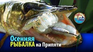 Рыбалка на реке Припять с Юлей Девончик. Осень 2016