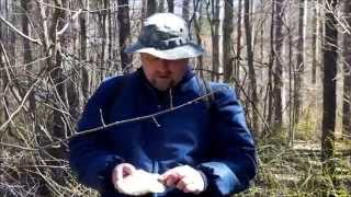 How To Sharpen Knife Bushcraft Style - Using Razor Strop Fungus to Hone Knife in Woods
