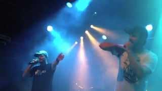 Hobbitz live Dachstock 2014