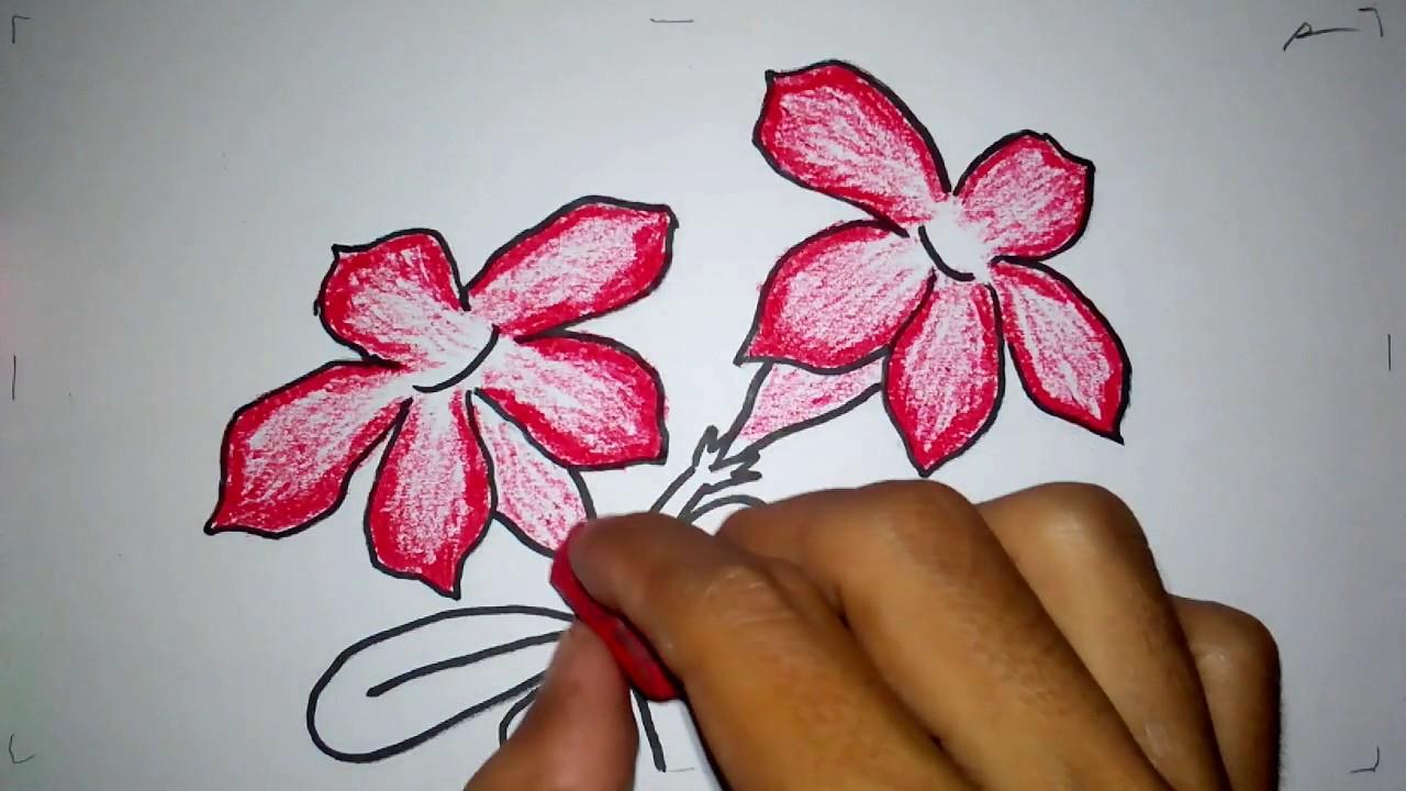 Cara Menggambar Bunga Kamboja Jepang Youtube