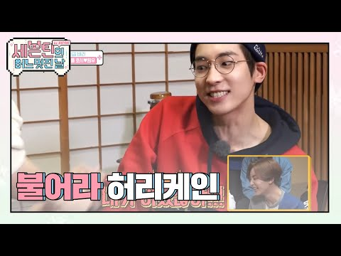 (SEVENTEEN One Fine Day in Japan EP.07) Youthful villains