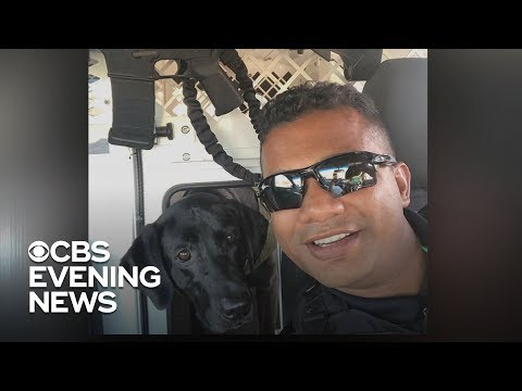 California manhunt for cop killer continues