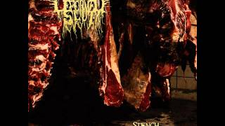 Deformed Slut - Necrobscurity Necrophile (Stench Of Carnage 2011)