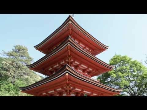 Japan Study Abroad   Michigan State University