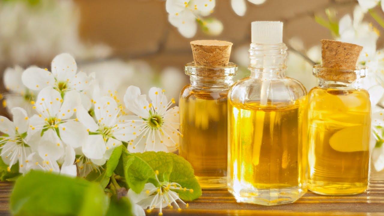 चमेली के तेल के फायदे   Chameli oil in english   चमेली के स्वास्थय लाभ - YouTube