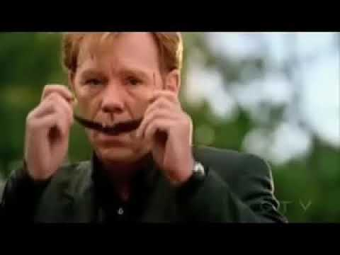 Csi Miami Horatio Caines Sunglasses Moments One Liners Youtube