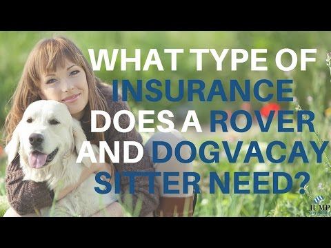 What Type Of Insurance Does A Rover and DogVacay Pet Sitter Need?