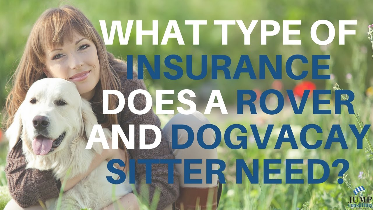 What Type Of Insurance Does a Rover and DogVacay Sitter Need?