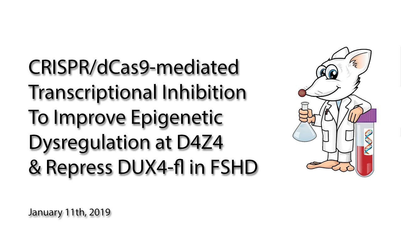 CRISPR/dCas9 Inhibition Research to Repress DUX4 Expression for Potential  Treatment or Cure of FSHD