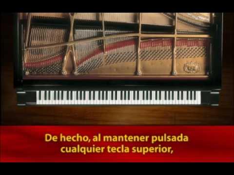 Mastery of Sound - String Resonance