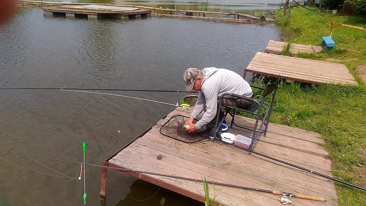 Рыбалка в поселке светлый