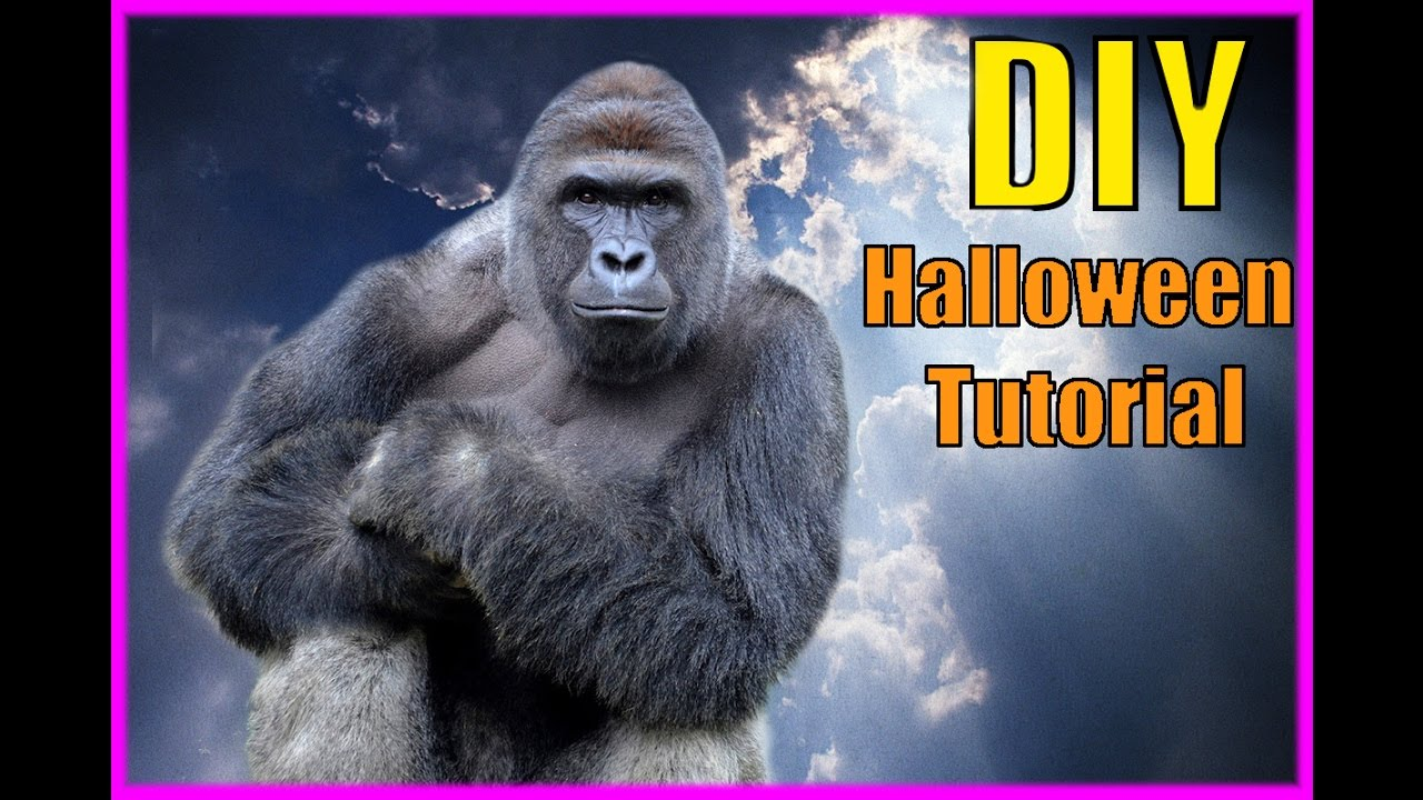 DIY Harambe Halloween Costume! - YouTube