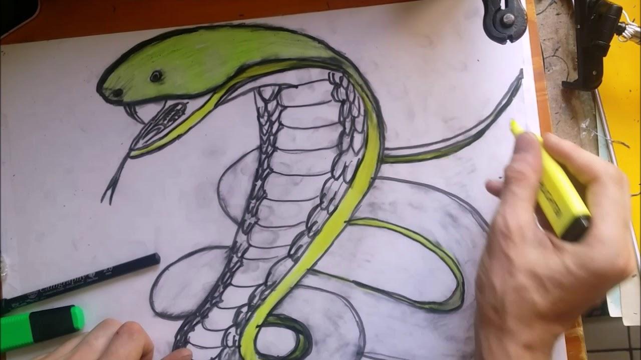 Dessin D Un Serpent Le Cobra Royal Fait En 3d