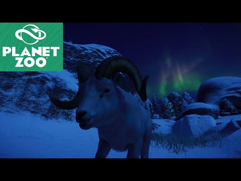 Planet Zoo - Arctic Pack DLC - Dall Sheep Habitat featuring Aurora Borealis!! |